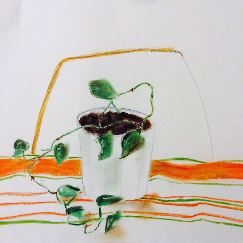 Straggler Plant